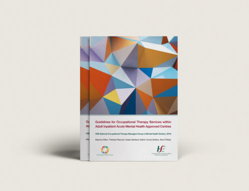 HSE Guidelines for Occupational Therapy Services